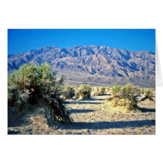 Devil's Cornfield And Panamint Mountains Greeting Card