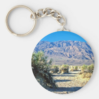 Devil's Cornfield And Panamint Mountains Keychains