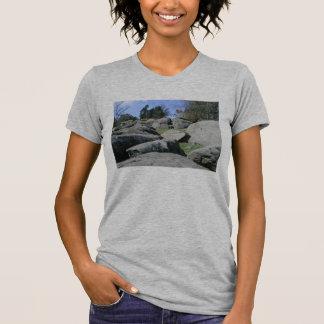 Devil's Den - T-Shirt #2