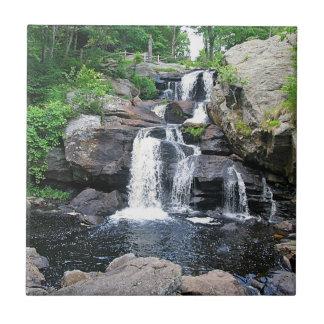 Devil's Hopyard Waterfall Trivet Tile
