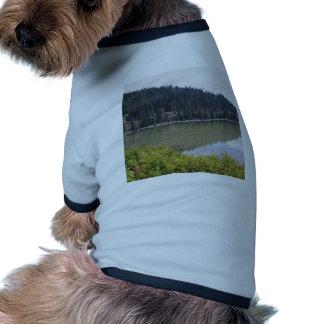 Devils Lake, Bend, Oregon Pet Clothes