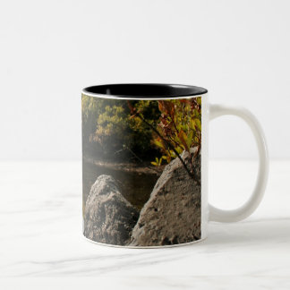 Devils Lake, Bend, Oregon Coffee Mugs