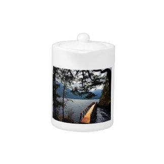 Devils Punch Bowl Olympic National Park Teapot