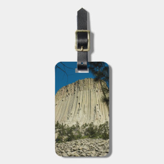 Devils Tower Easy ID Personal Bag Tag