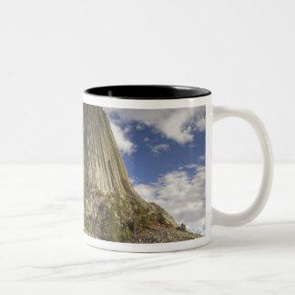 Devils Tower National Monument 2 Two-Tone Coffee Mug