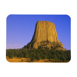 Devils Tower National Monument in Wyoming Magnet