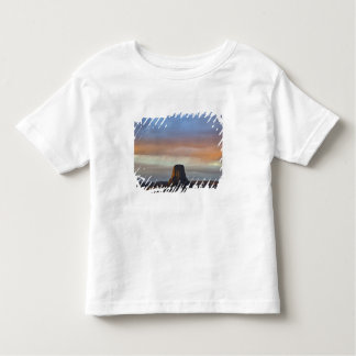 Devils Tower National Monument, Storm at Sunset Toddler T-shirt
