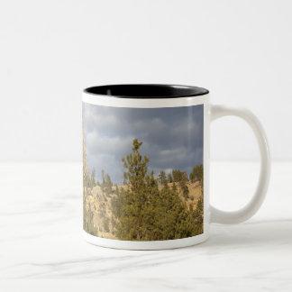 Devils Tower National Monument Two-Tone Coffee Mug