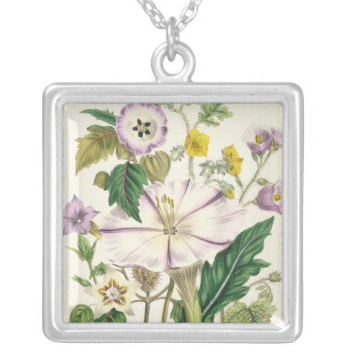 Devil's Trumpet, plate 46 from 'The Ladies' Square Pendant Necklace