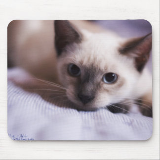 Deviously Cute Mousepad