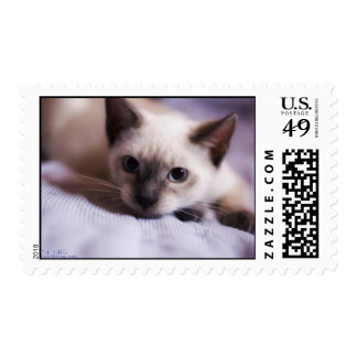 Deviously Cute Postage