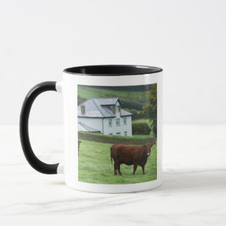 Devon, England Mug
