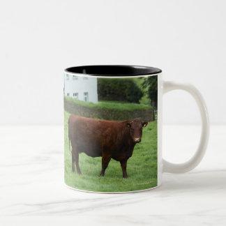 Devon, England Two-Tone Coffee Mug