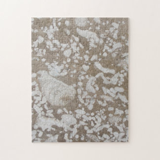 Devonian Fossil Brown & White Puzzle