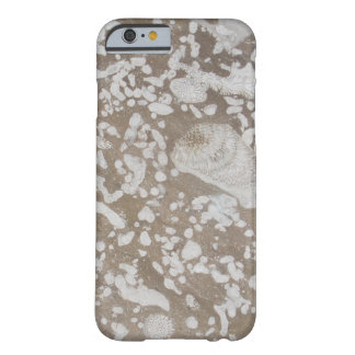 Devonian Fossil Gorge Barely There iPhone 6 Case
