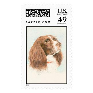Devotion Postage Stamps