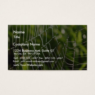 Dew And Spiderwebs Business Card