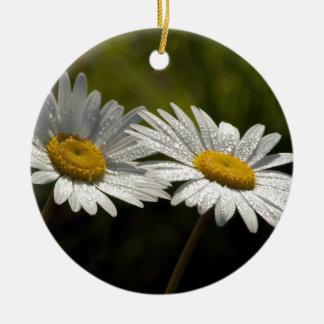 Dew Bejeweled Ox-eye Daisy Wildflowers Ceramic Ornament