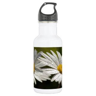 Dew Bejeweled Ox-eye Daisy Wildflowers Water Bottle