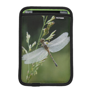 Dew covered Darner Dragonfly Sleeve For iPad Mini