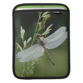 Dew covered Darner Dragonfly Sleeve For iPads