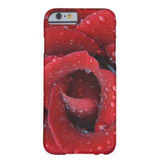 Dew covered red rose decorating grave site in barely there iPhone 6 case