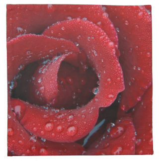 Dew covered red rose decorating grave site in cloth napkin
