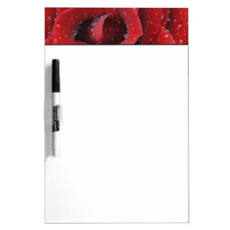 Dew covered red rose decorating grave site in Dry-Erase board