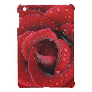 Dew covered red rose decorating grave site in iPad mini cover
