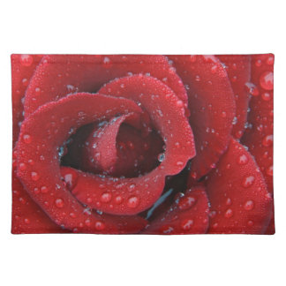 Dew covered red rose decorating grave site in placemat