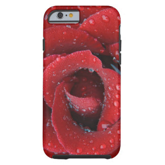 Dew covered red rose decorating grave site in tough iPhone 6 case