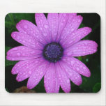 Dew Daisy Mouse Pad