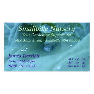 Dew Drop Double-Sided Standard Business Cards (Pack Of 100)