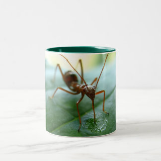 """Dew Drop Drink"" Mug"
