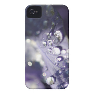 Dew Drop Flower Wall iPhone 4 Cover
