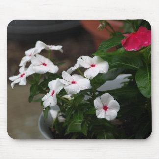 Dew Drop Flowers Mousepad