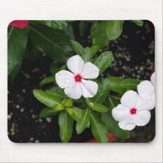 Dew Drop Flowers Mousepad #2