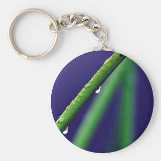 Dew Drop On Green Grass Keychains