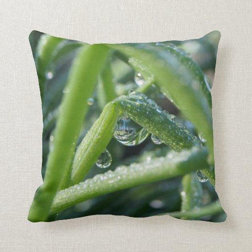 Dew Drop Pillows