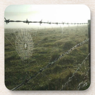 Dew Drops Coaster - Australian Country Collection