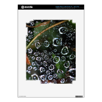 Dew drops in a spider net skin for iPad 3