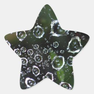 Dew drops in a spider net star sticker