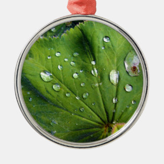 Dew Drops On A Leaf Metal Ornament