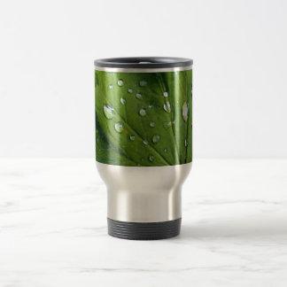 Dew Drops On A Leaf Travel Mug