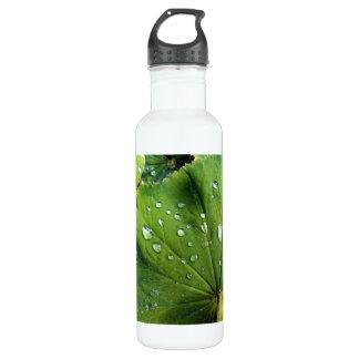 Dew Drops On A Leaf Water Bottle