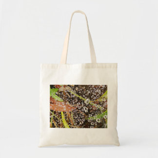 Dew Drops on a Spider Web Canvas Bag