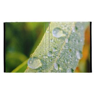 Dew Drops on Green Eucalyptus Leaf iPad Folio Cases