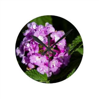 Dew Drops on Pink Lantana Flowers Wall Clock