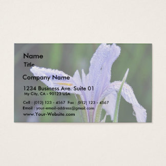 Dew Flowers 4 Business Card