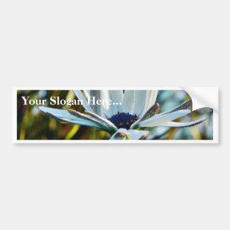 Dew Flowers Petals Bumper Sticker